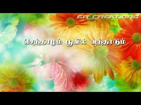 Tamil WhatsApp status lyrics || senthalam poovil vanthadum thendral song