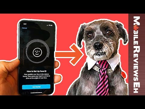 Can a DOG use FACE ID on the iPhone X?