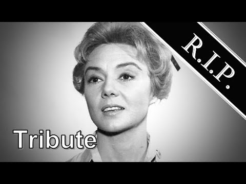 Peggy McCay ● A Simple Tribute