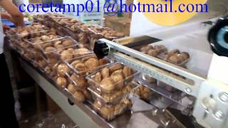 Baixar Mushroom flow packer, Mushroom flow wrapper, Mushroom pillow packaging machine