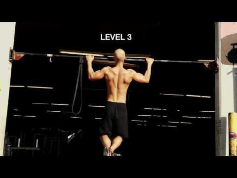 "Imersion Workout Regular Pull-ups ""Frank Medrano Ebook"" Day 2"