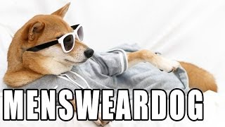 Mensweardog - Memed