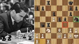 Mato Jelic chess videos