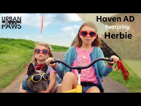 Haven Official TV advert featuring Herbie Extended version