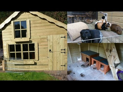Guinea Pig House Tour | April 2016