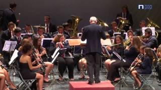 Baixar Banda Municipal de Música de Nerja Abba Gold 020711