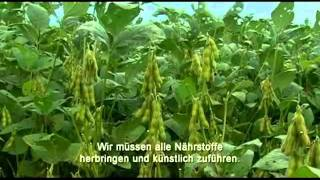 We feed the World (Trailer) eng.sub.flv