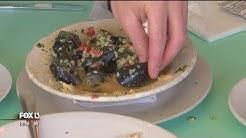 Admitted food snob found 'love at first bite' in Hernando Beach