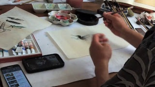 Henry Sharing Some Tips on How to Draw Hummingbirds