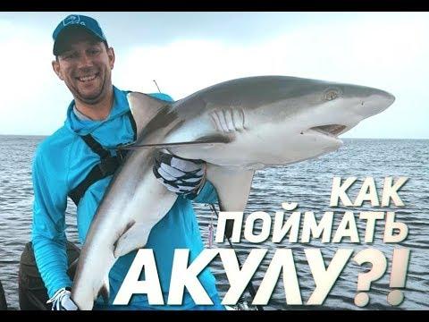 РЫБАЛКА С СЮРПРИЗОМ! Ловили рыбу, а клюнула АКУЛА!   Сейшельская экспедиция часть 2 Рыбий жЫр