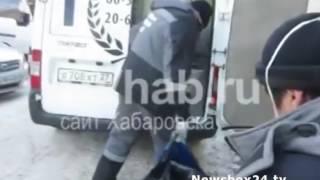 Жительницу Хабаровска съели ее собственные 18 собак