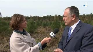 Landes : le ministre de l'Agriculture Didier Guillaume à la rencontre des professionnels du bois