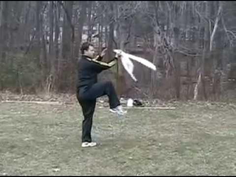 Yang saber 2nd form: Hangzhou China Jiang Yukun form