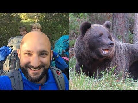 Auf den Spuren von Braunbären – Alutaguse Estland