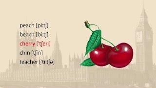 Урок 8. Английский Язык (Правила чтения согласных букв в сочетании с буквой H)