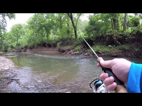 CREEK Fishing With ULTRALIGHT Setup