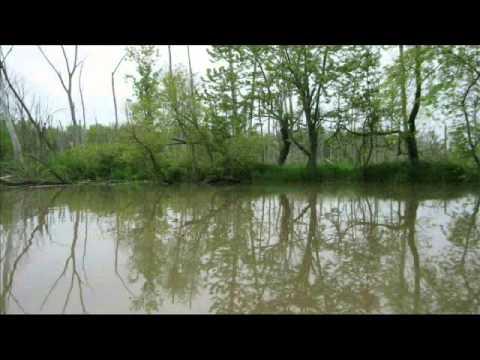 Little Calumet River May 2010