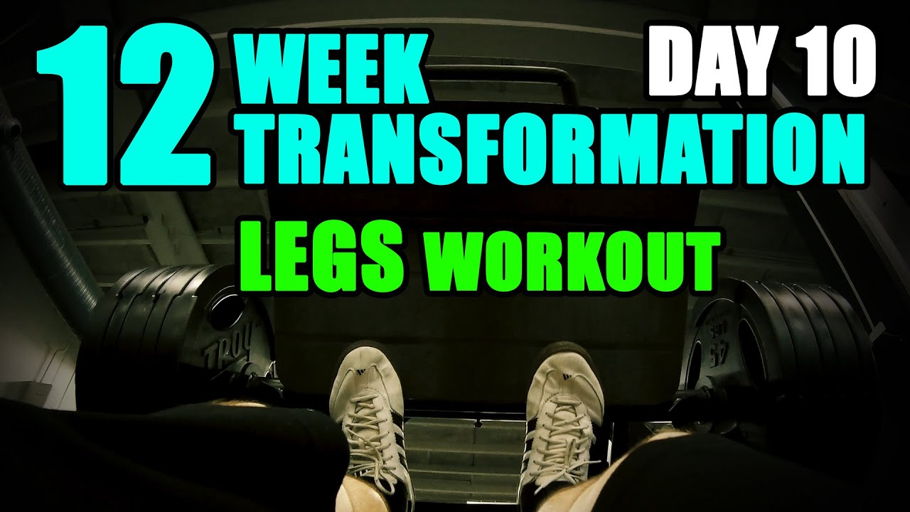 Arnold schwarzeneggers blueprint to cut legs workout l 12 week arnold schwarzeneggers blueprint to cut legs workout l 12 week transformation challenge l day 10 malvernweather Images