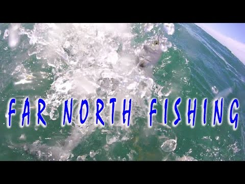 FAR NORTH NZ FISHING FOR SNAPPER, KAHAWAI & YELLOW TAIL KINGFISH