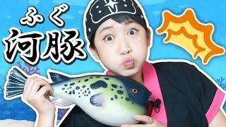 【UFOキャッチャー】ゲーセンで巨大「河豚(ふぐ)」釣りに挑戦!【ボンボンTV】