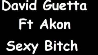 David Guetta Ft Akon - Sexy Bitch (DJ Baz Remix)