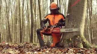 Die Sicherheitsfälltechnik - Du bestimmst, wann dein Baum fällt