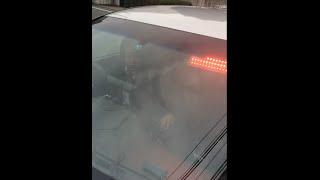 綺麗なお姉さんが2人乗る覆面パトカーに声かけてみた thumbnail