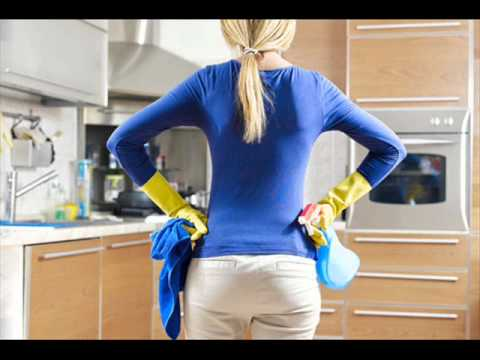 Dust Bunnies LLC Professional Maid Service Highlands Ranch CO
