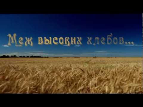 Клип Олег Погудин - Меж высоких хлебов