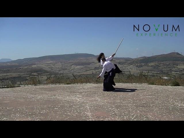 07 Kumi jo shichi - Aikido Novum Experience - Kumi jo Juppon -  組み杖七 - 組み杖十本  - 合氣道 - 合氣杖