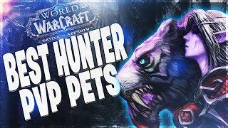 BEST HUNTER PVP PETS IN BFA!! BM HUNTER BATTLE FOR AZEOTH 8.0.1