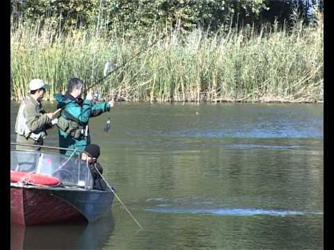 летняя рыбалка на судака видео - 2010-10-27 09:26:05