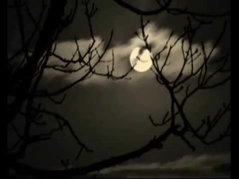 """Schoenberg: """"La Noche Transfigurada"""" (versión para orquesta de cuerdas/Karajan)"""
