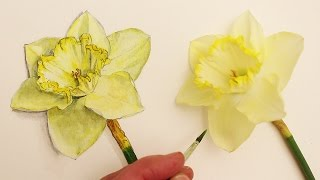 How to Draw Realism Challenge #3 Draw and Paint Flowers