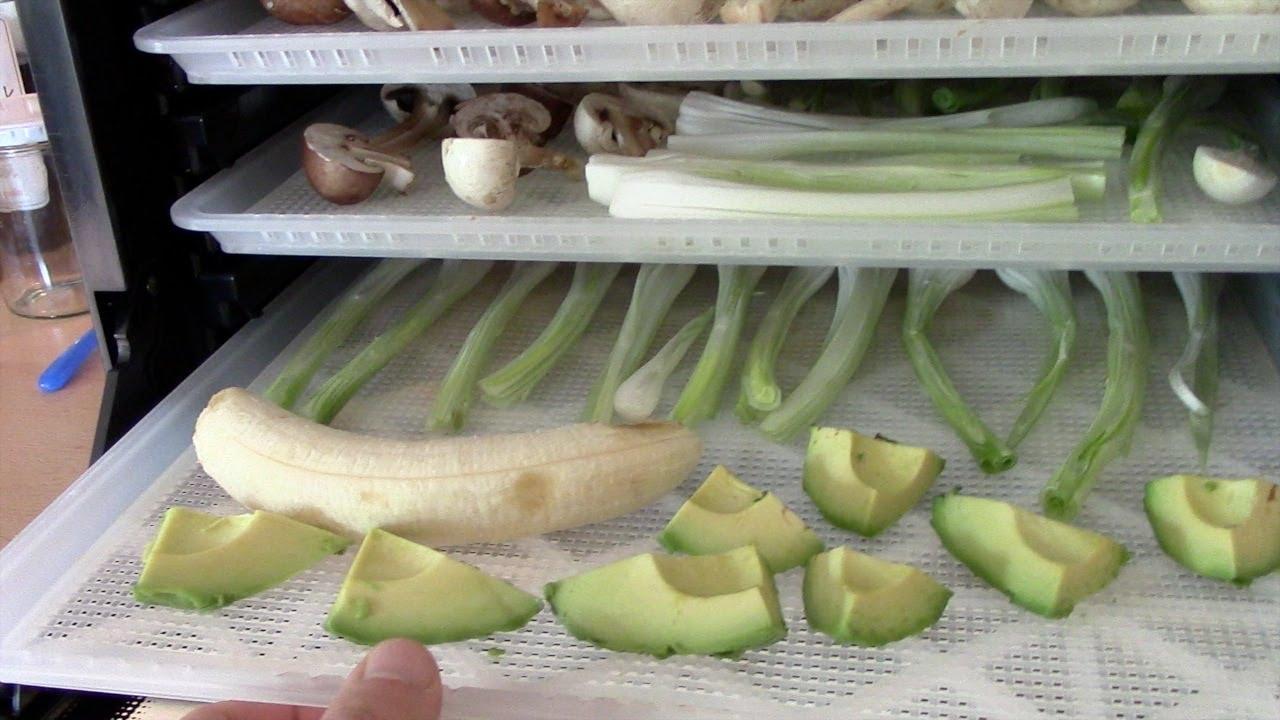 Gemüse und Obst haltbar machen (Sedona Dörrgerät) [VEGAN]