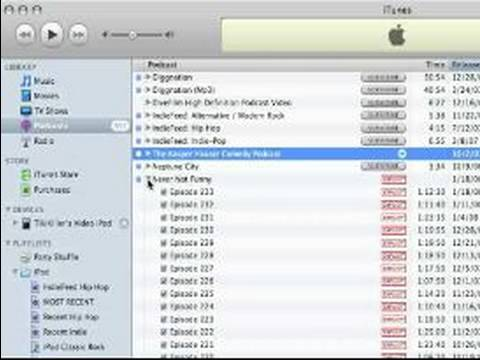 How to Use iTunes : How to Sync an iPod With iTunes