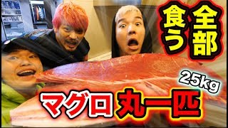 【25kg】32万円のマグロ1匹全部食い切れるまで帰れません!!!