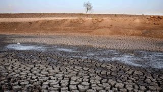 Ballads of Barren Lands - Drought, Heat wave and farm crisis in India