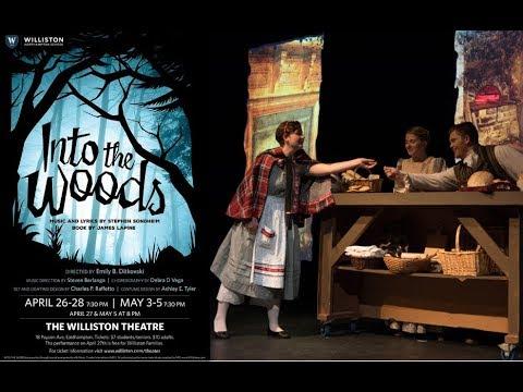 Williston Theater - Into The Woods (2018) Mp3