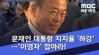 문재인 대통령 지지율