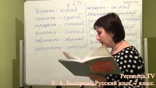 Peremena TV Русский язык, Быстрова, № 246