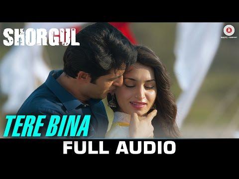 Tere Bina - FULL SONG | SHORGUL | Arijit Singh | Niladri Kumar | Suha Gezen & Aniruddh D & Hiten T