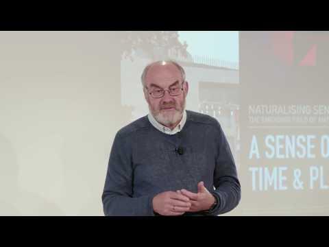Software Art Thou: Dave Snowden - Agile Software Development