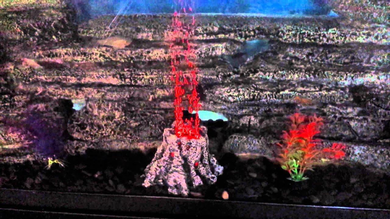 Fish tank volcano - My Diy Aquarium Volcano