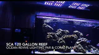 SCA 120 Gallon Reef | Ep.16 | Ocean Revive Lighting - Par & Coral Plans
