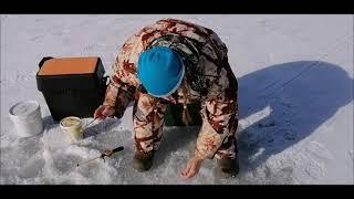 Рыбалка на Селигере весной Ловим плотву окуня подлещиков густеру