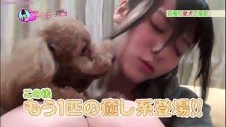 Bueno Aquí les Les dejo Un video Que Yajima Maimi La Lider se Todo ...