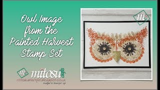How To Create an Owl Image from Painted Harvest by Stampin' Up!