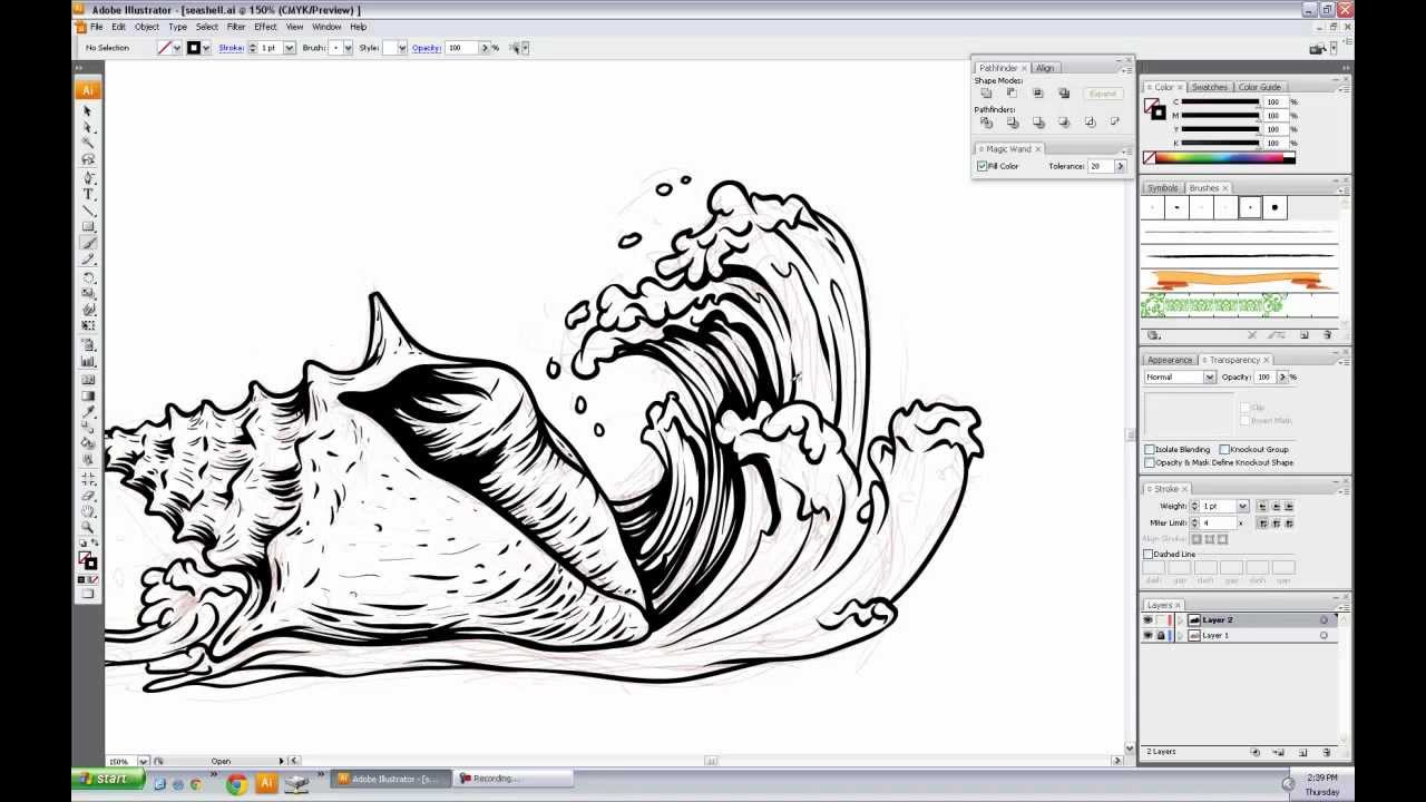 Charming Vector Seashell Speed Drawing   Illustrator   YouTube