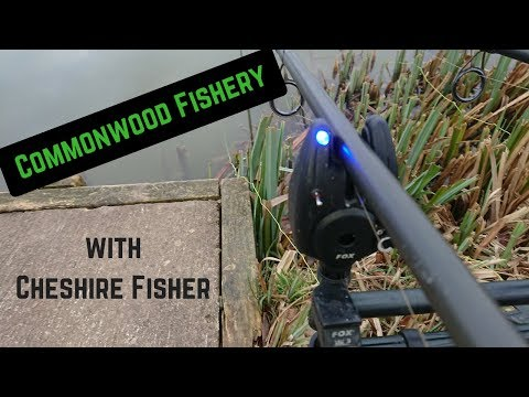 Commonwood Fishery With Cheshire Fisher - Fishing Weston Lake In February For Carp